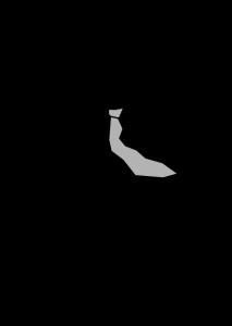 silueta