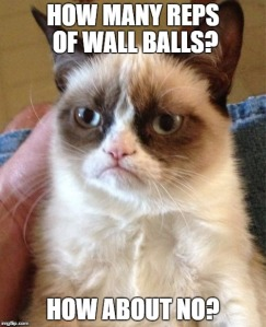 grumpy-cat-wall-balls