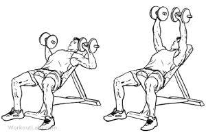Incline_Dumbbell_Press_M_WorkoutLabs