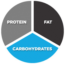 protein-carbs-fats-wheel