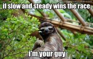 20b1ee5c478bc827006dff37efa2d697--sloth-memes-sloth-humor