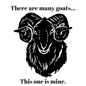 There are many goats...