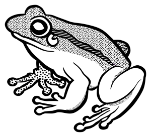 frog-lineart